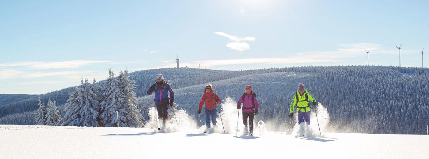 Stoneman Miriquidi on Snow Gruppe